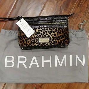 Rare Brahmin